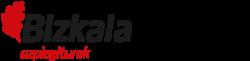Logo de Azpiegiturak